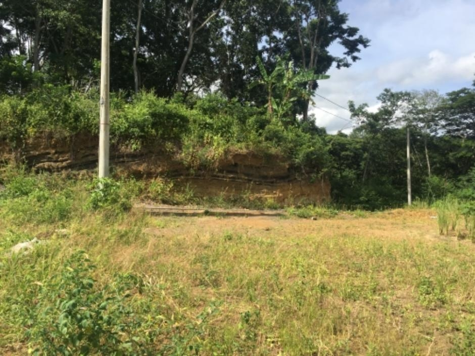 Lindo terreno en zona muy fresca, rodeada de árboles altos de Santo Domingo