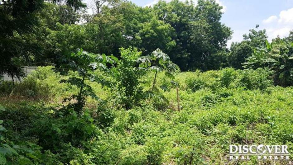 Excelente terreno en venta ubicado en carretera masaya.