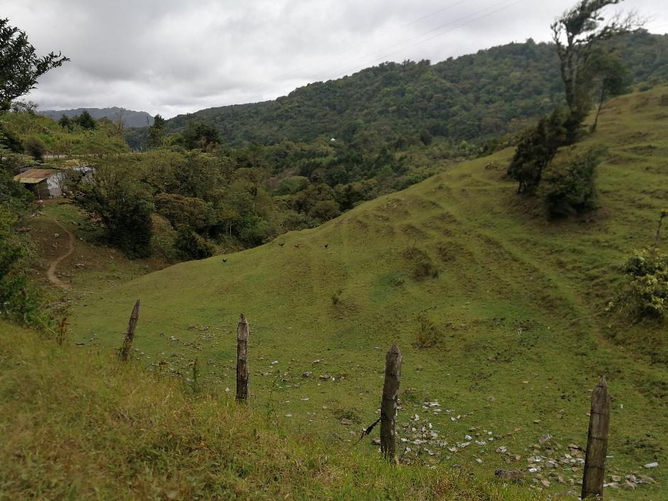 Pequeña finca agrícola a 100 mts de la carretera Matagalpa-Jinotega.