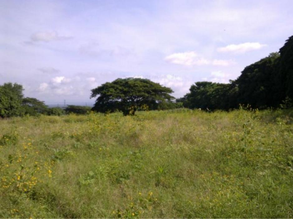 Terreno en venta en carretera a Masaya