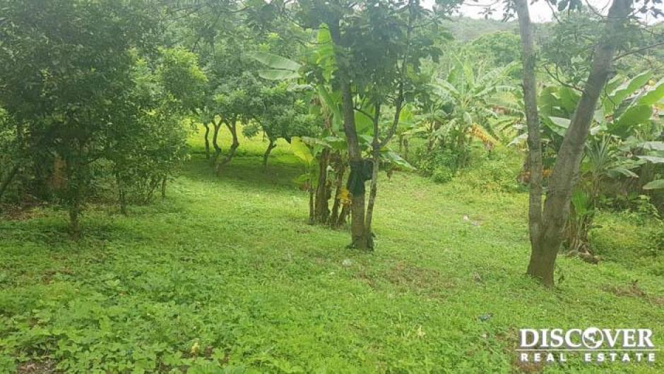 Terreno en venta ubicado en km 14 carreterra Masaya